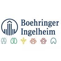 Boehringer-ingelheim Virtual Show